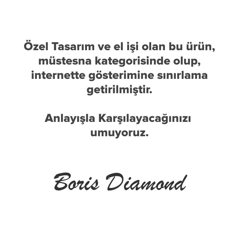 P011160